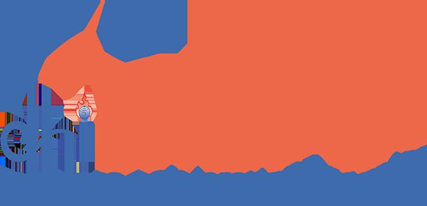 DHI BizAP logo